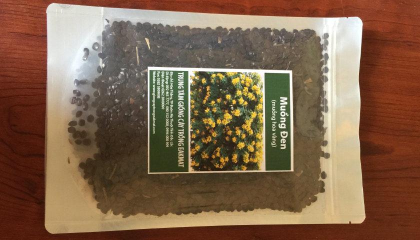 bao bì hạt giống cây muồng đen