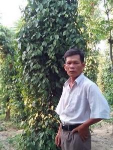 trinh-van-ba